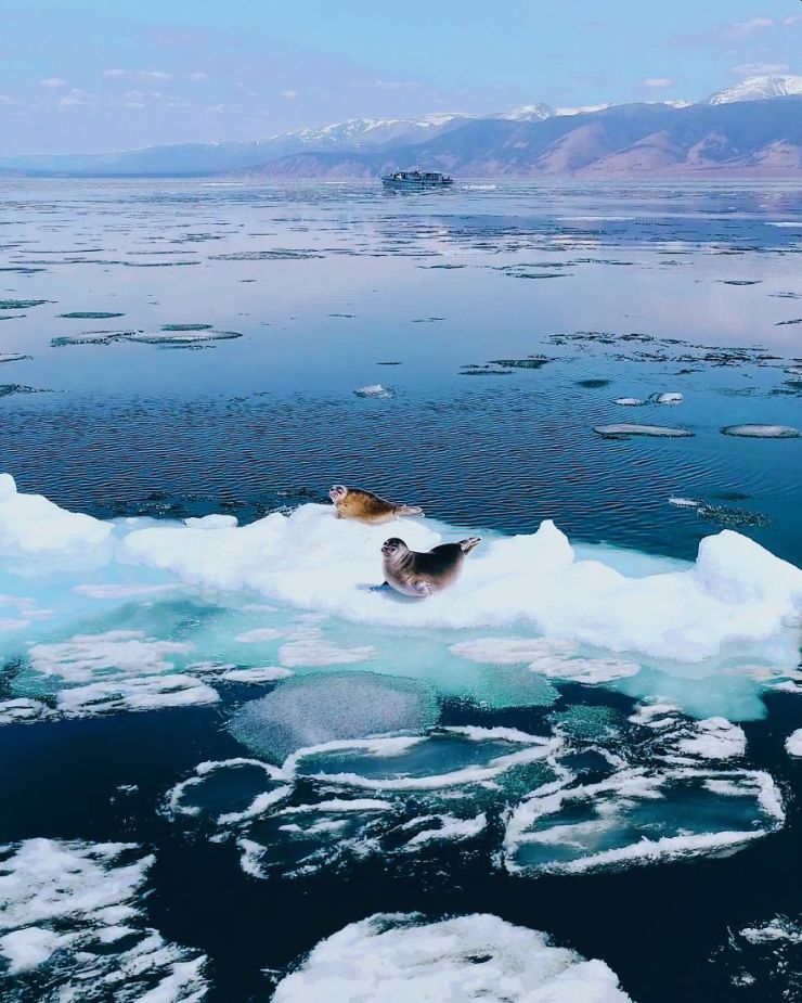 Λίμνη Βαϊκάλη: 10 υπέροχες φωτογραφίες | Alfavita