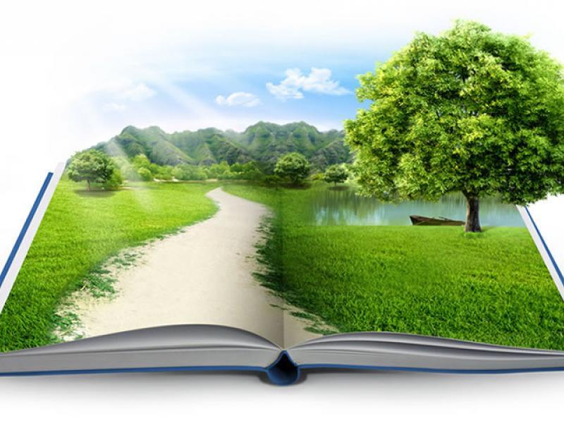 Περιβαλλοντική Εκπαίδευση»: Μεταπτυχιακό Πρόγραμμα Παν. Αιγαίου | Alfavita