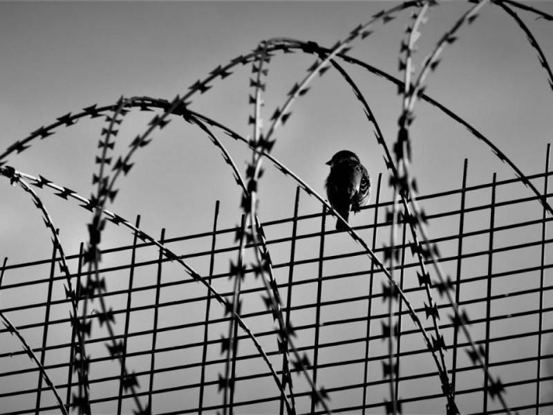 Η απέλαση της Sharareh Khademi στο Ιράν σημαίνει θάνατο | Alfavita