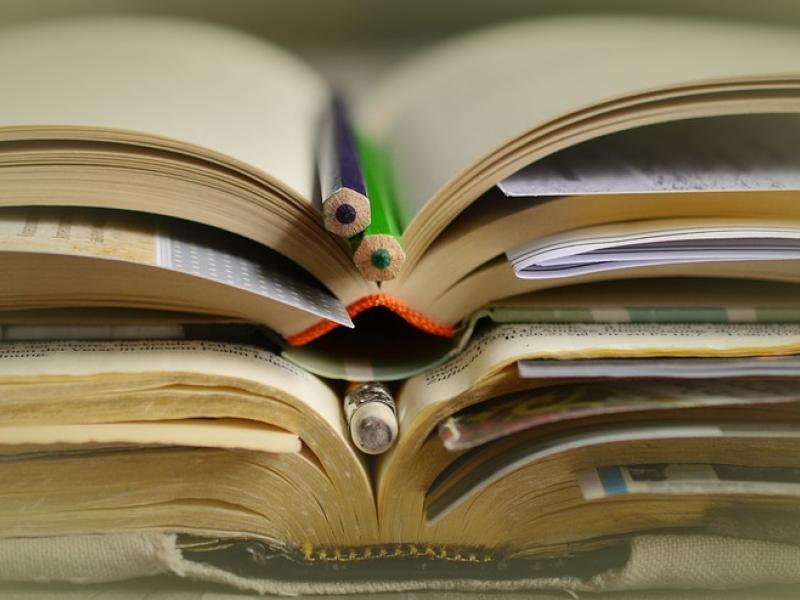 Παρέμβαση της ΔΔΕ Μαγνησίας για τη μαθήτρια που διάβαζε στο πεζοδρόμιο