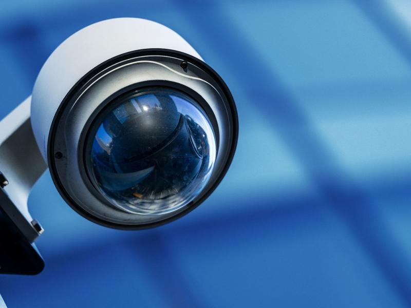 camera videoskopisi