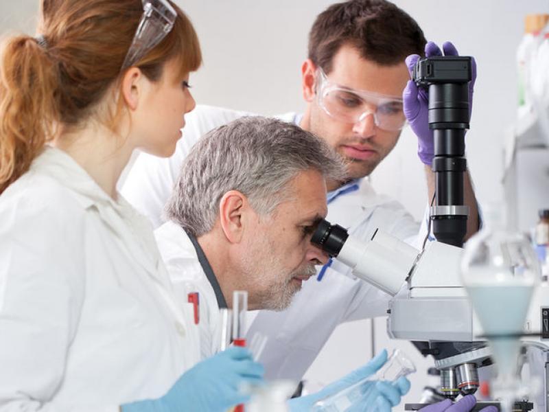 Επιστήμη: Οι 11 Έλληνες πανεπιστημιακοί με τη μεγαλύτερη παγκόσμια επιρροή