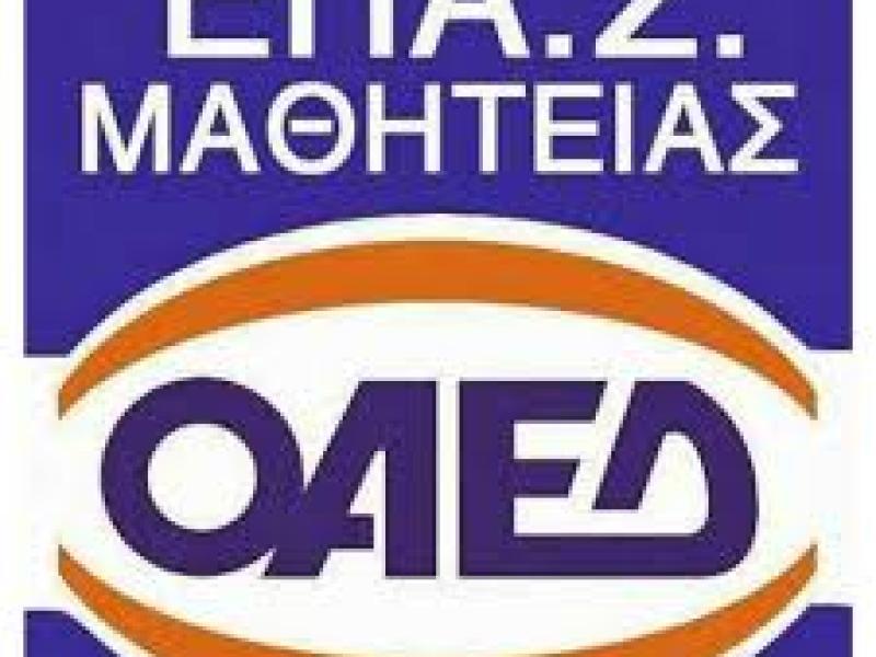 Επαγγελματική εκπαίδευση: Υποβάθμιση των ΕΠΑΣ του ΟΑΕΔ βλέπουν οι συμβασιούχοι εκπαιδευτικοί