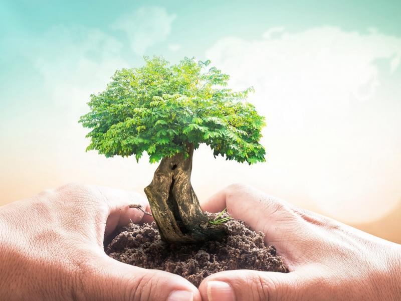 Γιατί η Περιβαλλοντική εκπαίδευση θέλει ολόκληρο τον ουρανό…