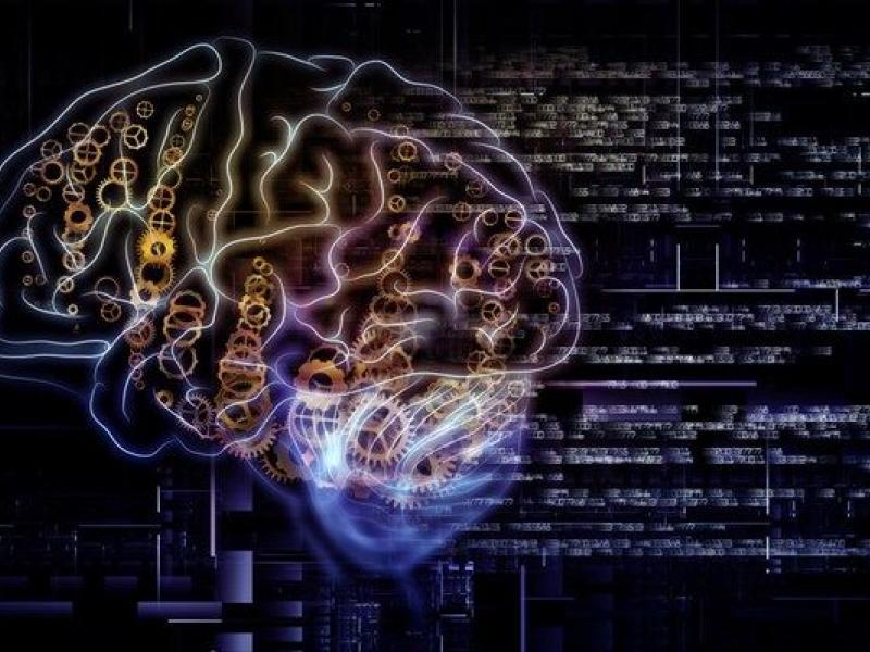 31ff0e00ec8 Η ομορφιά των μαθηματικών και ο ανθρώπινος εγκέφαλος